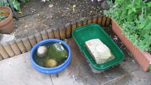 New 'lake' birdbath just before I added the small stone bridge to safety.
